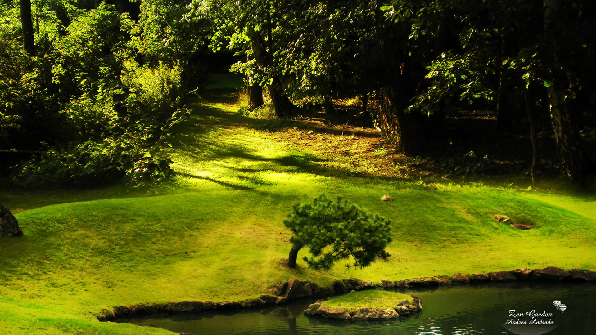 green nature background hd - photo #45