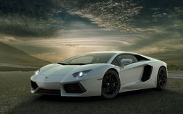 White Gallardo Background