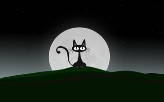 Cat Cartoon Wallpaper