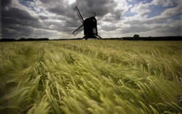 Pitstone Windmill Wallpaper