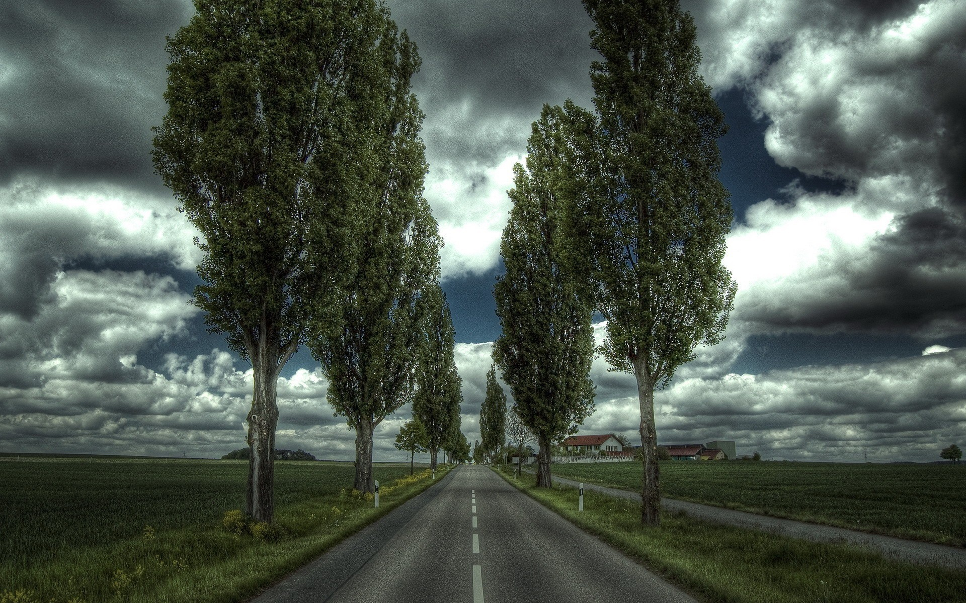 Road Wallpaper 1920x1200