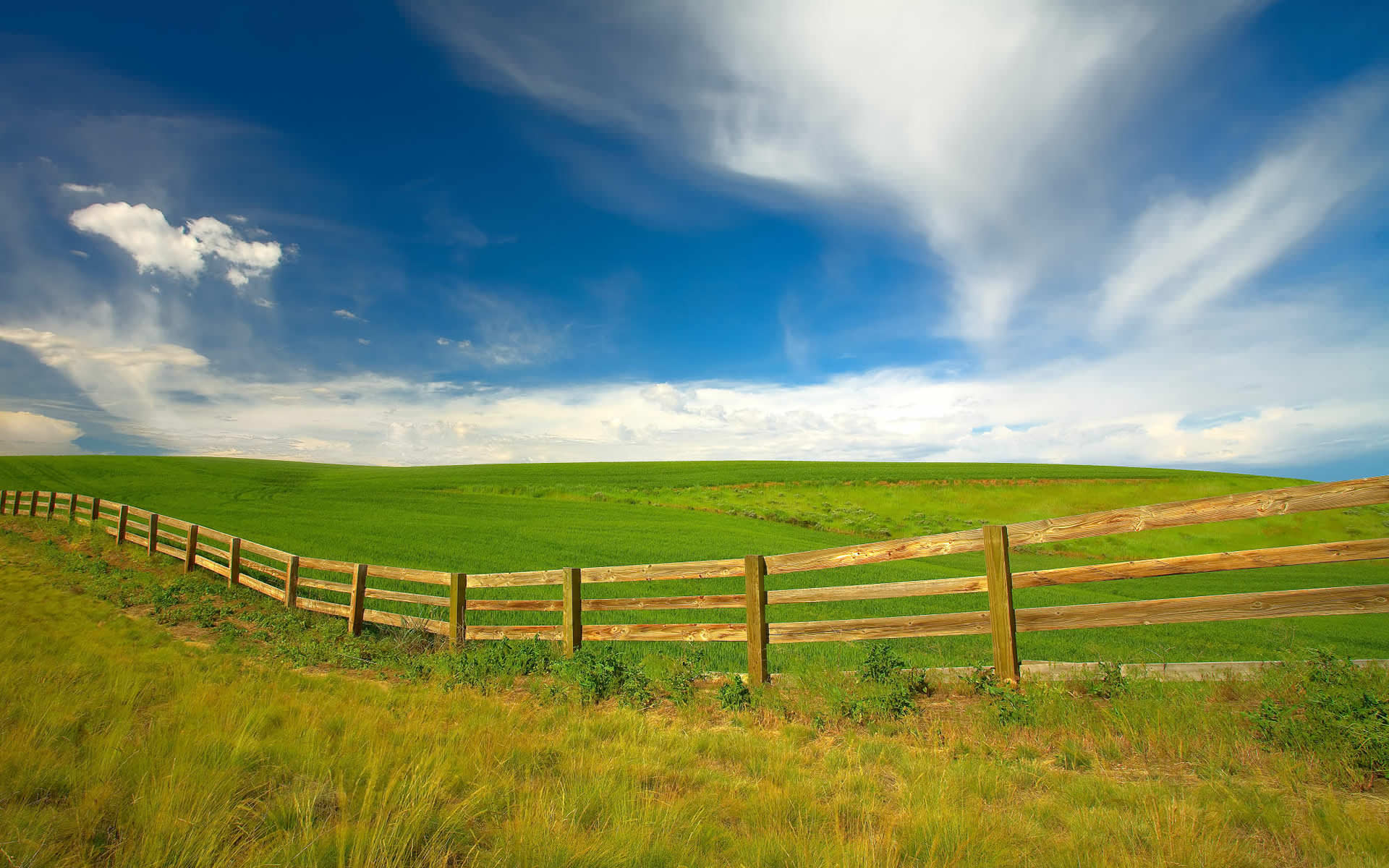 green spring background - photo #22