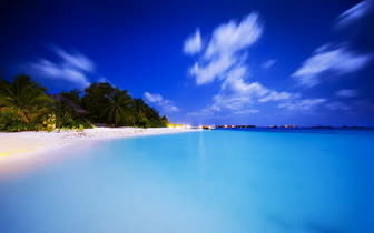 Tropical Summer Beach Background