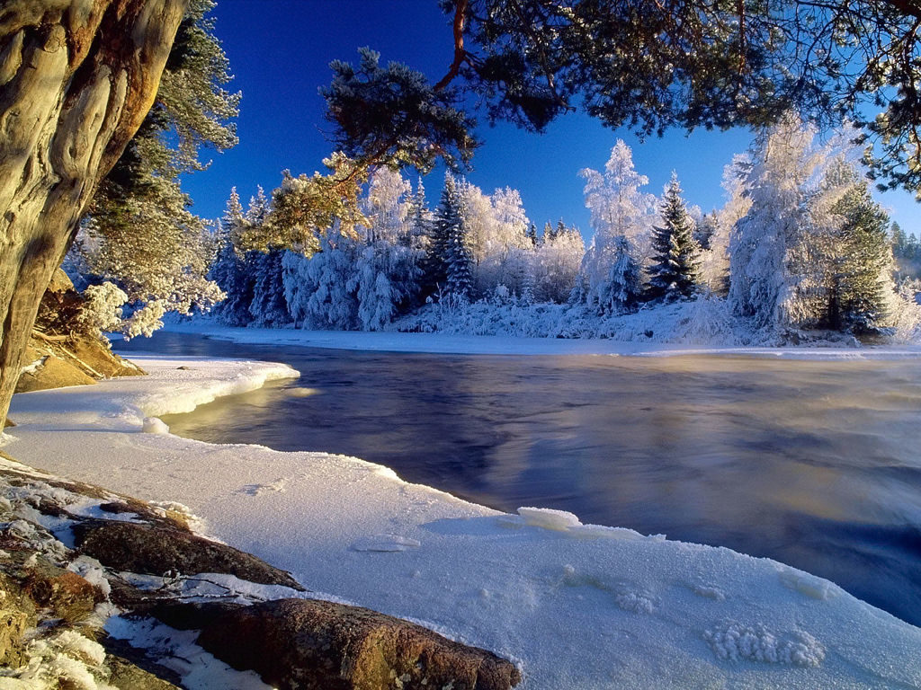 3d winter scenes wallpaper - photo #42
