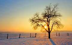 <h1>Winter Hd Wallpaper</h1>
