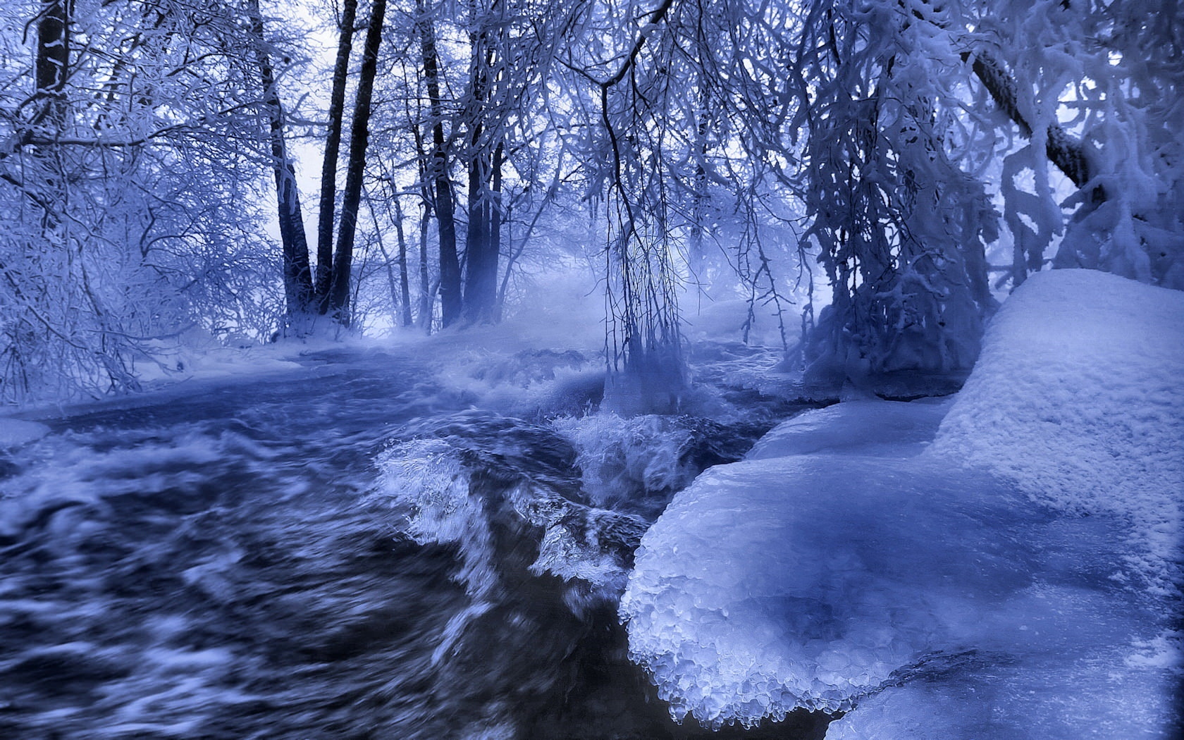 Winter Scene Wallpaper 2017
